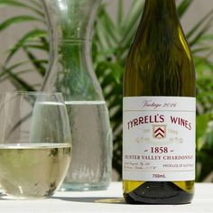 2016 Tyrrell's 1858 Hunter Valley Chardonnay is a White panel passed wine available as part of our Chardonnay range at The Wine Collective. Enjoy this great value Chardonnay, backed by our money-back satisfaction guarantee. White Paneling, White Wine, Wines, Bottle, Flask, White Wines, Jars