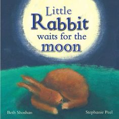 Little Rabbit Waits For the Moon (Meadowside PIC Books) b...