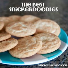 Soft Snickerdoodles - Bits of Everything