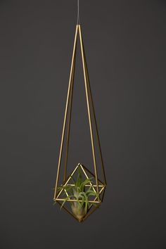 Himmeli Diamond Air Planter by SpazzHappyLineDesignDiamond Raindrop II by SpazzHappyLineDesign on EtsyHanging plants - Hanging plants container as living accessories inside or outside - Garden Design IdeasHanging Plants – Hanging Plants Container A Air Plant Display, Hanging Planters, Hanging Air Plants, Hanging Gardens, Plant Holders, Geometric Shapes, Plant Hanger, Decoration, Diy Home Decor