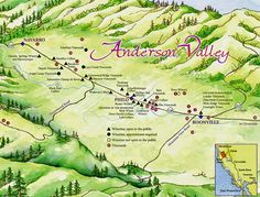 19th+annual+Anderson+Valley+Pinot+Noir+Festival - Google Search