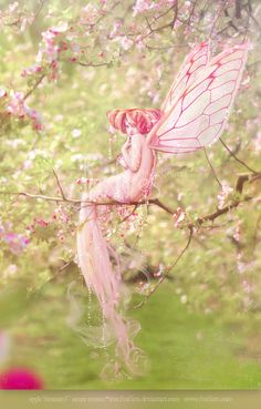 Enchanting Fairy amidst pink blossoms