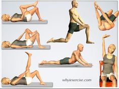 Back stretching exercises: improve flexibility, relieve tension