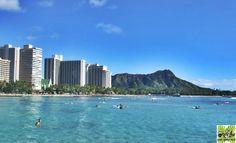 《五感スイッチON!ハワイ旅》#001 日常、五感を意識して生活していますか? 海・山・街、そして空-全身でハワイを感じ、五感からの刺激をスイッチオンにしてくれるハワイ旅。 エメラルドグリーンに輝く美しい海を眺める贅沢。 ハワイは五感を刺激する魅力がいっぱい! #ハワイ好き #コンドミニアム #ベストアロハステイ #パシフィックモナーク #五感 #ワイキキ #ハワイ旅行 #Hawaii #アロハ