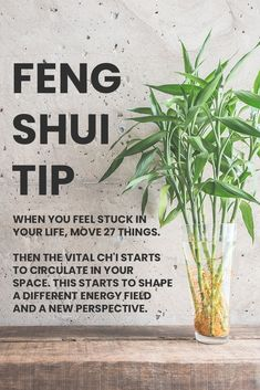 Tips for Creating Feng Shui in Your Bedroom for a Good Night's Rest — dvd Interior Design - - Sleep is essential for our health and survival, yet at times it is fleeting. Sleep better now, Our Tips for the Best Rest. How to Feng Shui your bedroom. Feng Shui Your Bedroom, How To Feng Shui Your Home, Feng Shui House, Feng Shui Living Room Layout, Feng Shui Garden, Feng Shui New Home, Feng Shui Headboard, Feng Shui Your Life, Home Design
