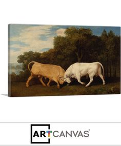 Ready-to-hang Bulls Fighting 1786 Canvas Art Print for Sale canvas art print for sale. Free hanging accessories and insurance. Art Prints For Sale, Canvas Art Prints, Moose Art, Painting, Animals, Animales, Animaux, Painting Art, Paintings