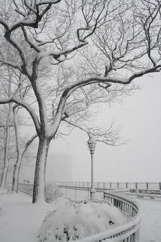 Brooklyn heights promenade, NYC, winter