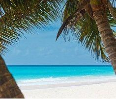 ImgLuLz Serve you Funny Pictures, Memes, GIF, Autocorrect Fails and more to make you LoL. Beautiful Beach Sunset, Beautiful Beaches, Tahiti French Polynesia, Jamaica Vacation, Beach Vacations, Where Is Bora Bora, Lanai Island, Tropical Beaches, Beach Print