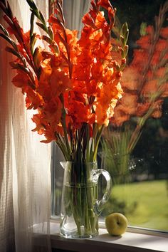 Gladiolus make such a beautiful arrangement all by themselves!
