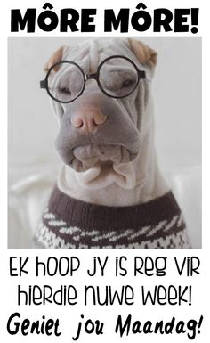 Afrikaanse Quotes, Goeie More, Good Morning Messages, Van, Good Morning Wishes, Vans, Vans Outfit