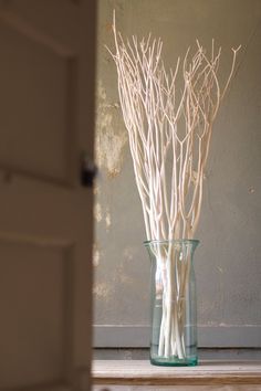 Beautiful bleached curly willow branches by Kalalou. Product Description ‰ۢ Product Dimensions: T ‰ۢ Sold in Boxes of: 6 Each ‰ۢ SKU: ‰ۢ Brand: Kalalou Returns & Exchanges Non-returnable. Damaged items will be replaced. See full return policy