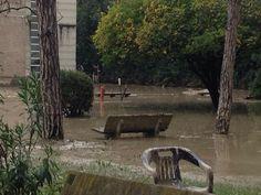 #alluvione #parma