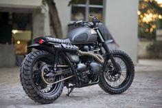 Triumph Bonneville Scrambler by Rajputana Custom Motorcycles: