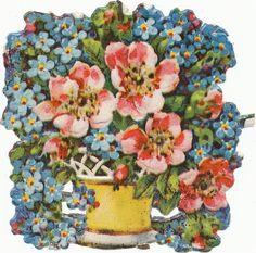 alte Oblate Glanzbild um 1920/30 Vergißmeinnicht und wilde Rosen