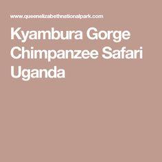 Kyambura Gorge Chimpanzee Safari Uganda