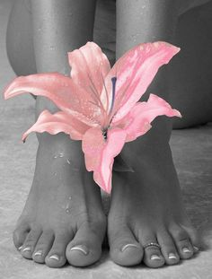 the delicate feet of the elegant female...