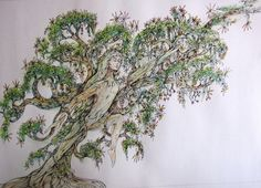 Carol's Tree - ink drawing