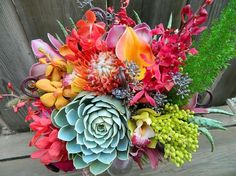 succulent orchid fern bouquet by irenepo