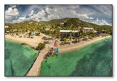 Bolongo Bay Beach Resort 2 for 1 Swim with the Sea Turtles http://taylormadetravel.agentarc.com