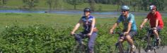 Wine Country Bike Tours | Napa Wine Country Tours    Sunday, March 24th:  Bicycle ride thru vineyard Trail  10:00am-3:00 pm  $149 each