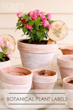 Botanical Plant Labe