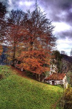 Valle del Miera #2. Cantabria