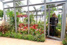 Mias trädgård: Hampton Court Flower Show 2014 - del 2