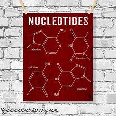 DNA Poster Nucleotides Science Art Biology by GrammaticalArt, $18.00