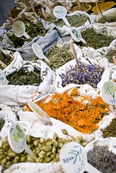 A comprehensive list of Herbal Medicine Making Resources from Living Awareness Institute. From containers to herb suppliers and so much more!