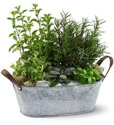 Herb Garden Bouquet