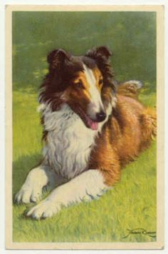 Victorian Postcards - Dogs