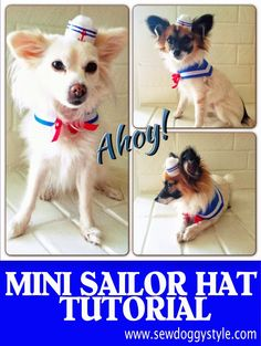 DIY Mini Sailor Hat from a toilet paper roll. Sailor dog costume