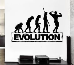 Gym Sports Wall Decal Bodybuilding Fitness Evolution Stickers Art Mural (ig2511)