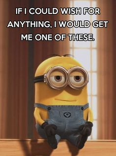 If I could wish for anything, I would get a Minion. -  Despicable Me