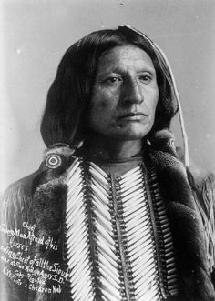 Head and shoulders portrait of Apiatan, a Native American Kiowa. He wears a hair pipe breastplate, a fringed shirt, and his hair is bound by strips of fur.