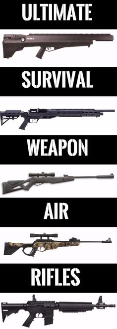 Air Rifle: The Ultimate Off-Grid Weapon You Need For Personal Security
