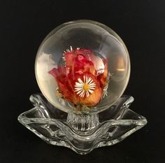 A personal favorite from my Etsy shop https://www.etsy.com/listing/274633282/rose-and-daisies-souvenir-paperweight