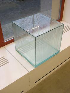 Tue Geenfort, BONAQUA Condensation Cube, 2005