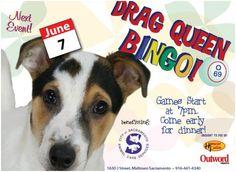 Drag Queen Bingo This Thursday June 7th to benefit @SacCityAnimals at Hamburger Patty's