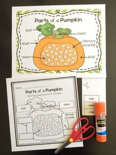 Parts of a Pumpkin labeling activity! $