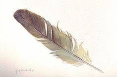 Feather 123 Sparrow Feather  Original Watercolour  by jodyvanB