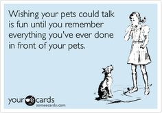Sober in a Nightclub: If pets could talk....