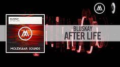 Bluskay - After Life (Molekular Sounds)