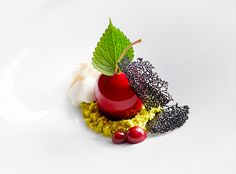 Cherry ripe with coconut and bitter chocolate by chef Shaun Hergatt. © Signe Birck. - See more at: http://theartofplating.com/gallery/?home=1&link=post-376#gallery37861