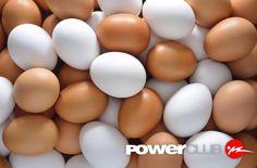 TIP @powerclubpanama en el #DiaDelHuevo Las personas que en su dieta incluye huevos para desayunar logran perder un 60% más de peso que quienes comienzan su día con una fritura.La proteína de alta calidad de los huevos completos ayuda a controlar el apetito. Además la proteína del huevo se absorbe con facilidad por el organismo por lo que es un alimento idóneo para la recuperación muscular después de una tirada larga o de un entrenamiento de ritmos #CualEsTuExcusa #YoEntrenoEnPowerClub
