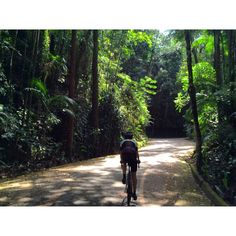 Welcome to the jungle  #cycling #iamspecialized #RioDeJaneiro