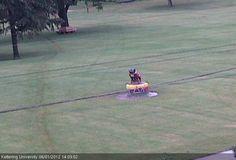 Live Webcam | Kettering University: We have a live webcam feed now at http://www.kettering.edu/webcam