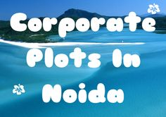 Prop World Realty are providing (09810000375) corporate plots for sale, purchase in noida, resale corporate plots, corporate plots on expressway. For more details visit at: http://www.resalepropertyinnoida.in/corporate-plots-in-noida.html