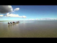 Rideferie og ridning på islandske heste | Ridekurser| Læsø | Krogbækgaard - Krogbækgaard Ridecenter