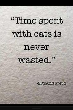 Apparently there's no definitive proof that Freud ever said this, but I agree with it, whatever its origin. :) #cats #quote